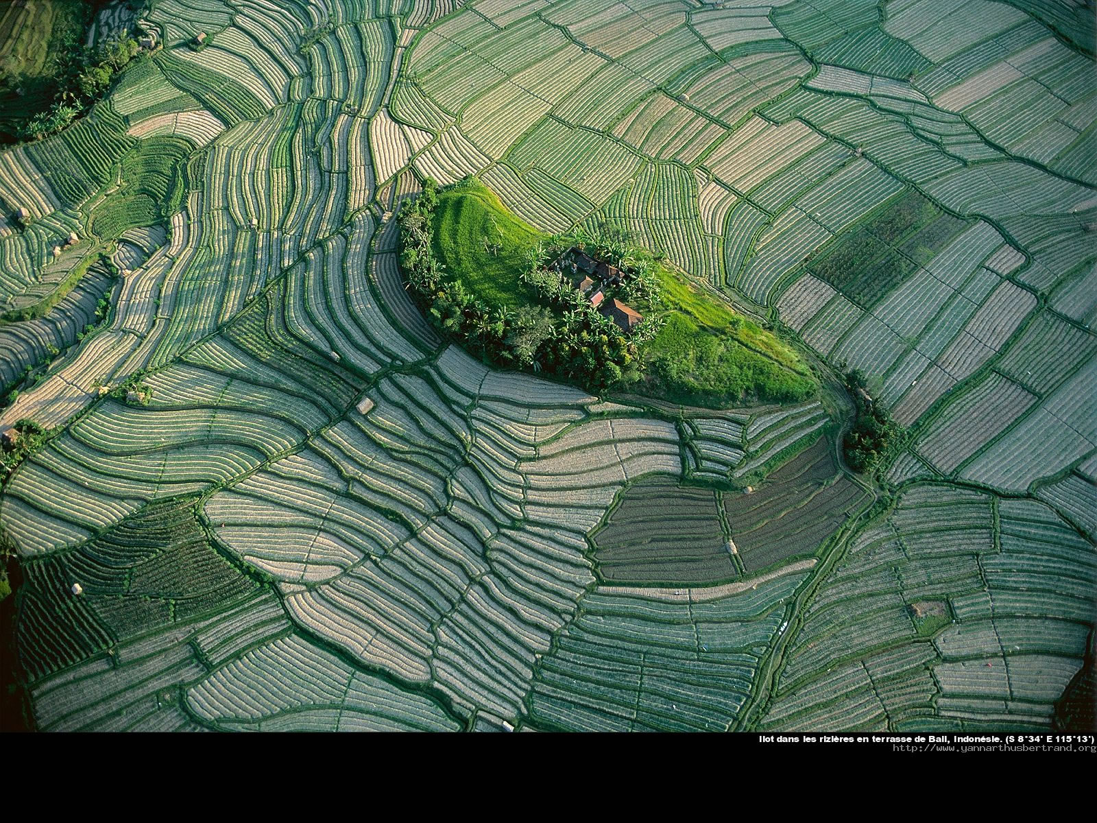 Yann arthus bertrand for Fond ecran photo yann arthus bertrand